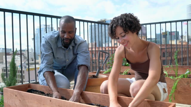 Young couple working in their urban garden together video