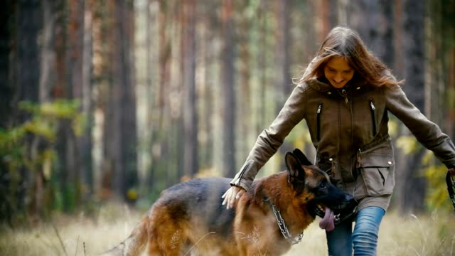 Young cute happy woman plays with her dog - german shepherd in yellow autumn park, slow-motion video