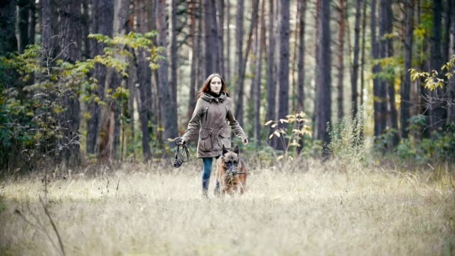 Young cute happy woman plays with her dog - german shepherd in yellow autumn park - dog plays with a branch, the girl's hair waving, slow-motion video