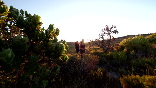 Young energetic hiker couple hiking on mountain in nature video