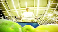 Young European-looking man shopping in the fruit section of a supermarket video