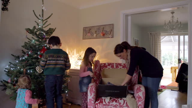 Young Family Putting Up Christmas Decorations video