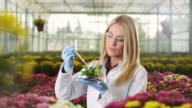 Young female biologist at greenhouse video