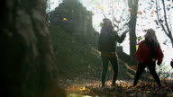 HD SLOW: Young females throw autumn leaves high into air video