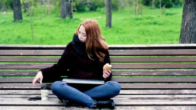 Young freelance woman in scarf working on her laptop on the bench in the park video