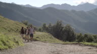 Young friends hiking toward camera on a road in mountain outdoor nature scenery during summer day - HD video footage video