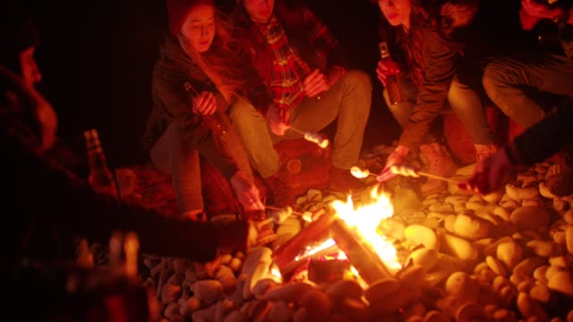 Young friends roasting marshmallows over campfire during winter camping trip video
