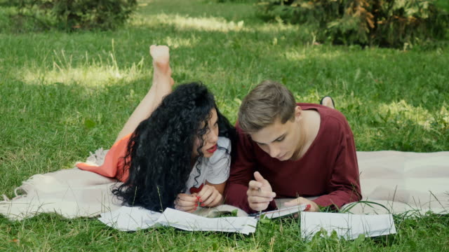 Young girl and guys preparesto exams in summer park on plaid video