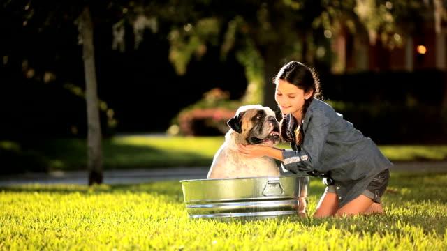 Young Girl Bathing her Pet Bulldog video