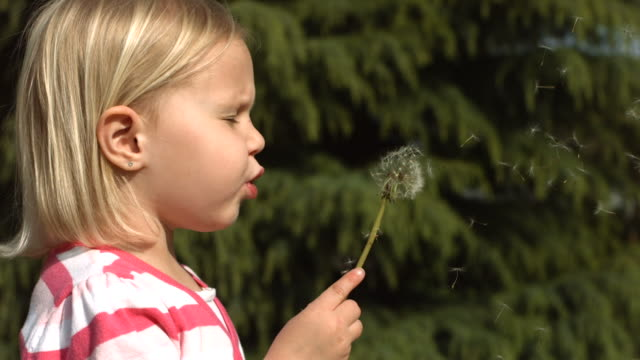 Young girl making a wish, slow motion video