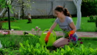 Young girl planting flowers in the garden video