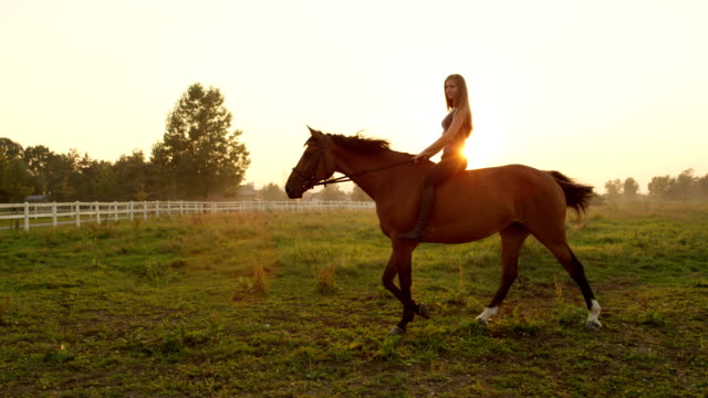 SLOW MOTION: Young girl riding bareback on meadow field at golden summer sunrise video