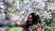 Young girl shaking a blossoming cherry branch in spring orchard and laughing when petals fall down like snowflakes on her curly hair video