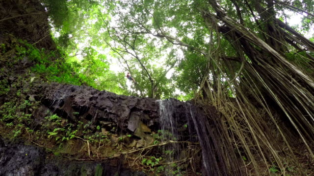 Young girl sliding on cable above big rocky wall in overgrown jungle rainforest video