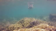 Young girl snorkeling over a shallow reef taking pictures video