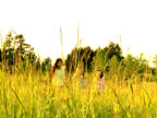 NTSC Young girls run through tall gras video