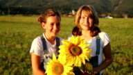 Young girls with sunflowers at sunset video