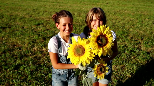 Young girls with sunflowers looking up video