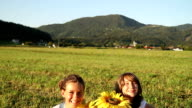 Young girls with sunflowers sitting on grass video