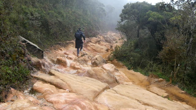 Young guy in raincoat jumping and jogging on rocky trail during travel. Hiking man with backpack running in stone ground in wet forest. Male tourist going on jungle path. Slow motion Rear back view video