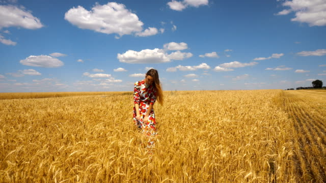 young lady in a dress standing in a wheat field video