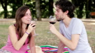 young lovers toasting with red wine at the camera video
