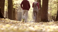 Young man and woman running in the park video