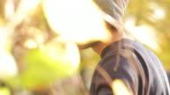 Young man circles tree video