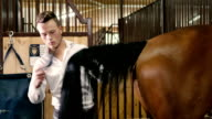 Young man combing a horse tail video