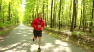 HD STEADY: Young Man Jogging In The Forest video
