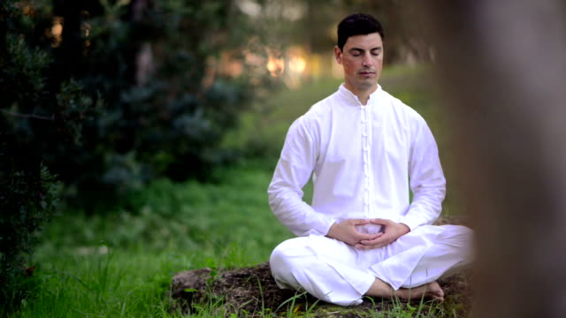 Young Man meditating in the nature video