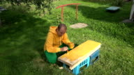 young man paint wooden board with yellow colour outdoor yard video