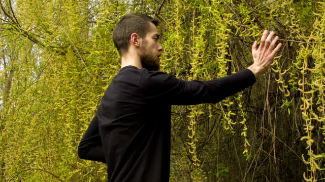 Young man practicing wing chun in the forest video