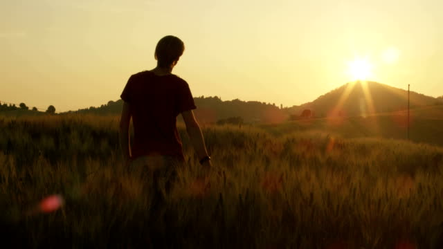 Young Man Raising Hands in Wheat Field at Sunset video