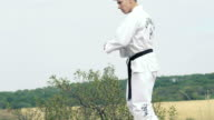 Young master of sport training the hits on the nature. Slowly video