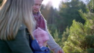 A young mother and father with their baby choosing a Christmas tree at a farm video