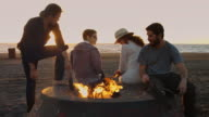 Young People Hanging Out at Beach Bonfire video