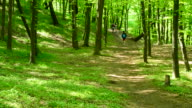 Young people walk in a lush green spring forest video