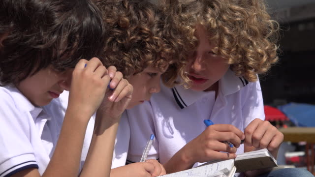 Young School Boys Studying video