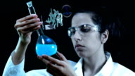 Young scientist in the laboratory. video