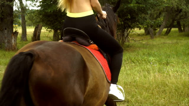 young sexy athletic horsewoman horse video