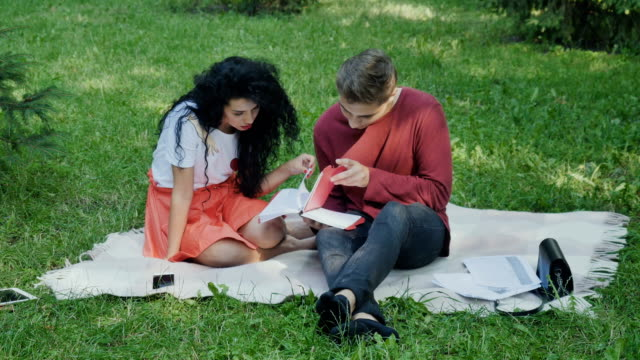Young students preparing to exams in university in summer park video
