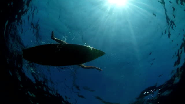 SLOW MOTION UNDERWATER: Young surfer girl paddling on a surf in open water ocean video