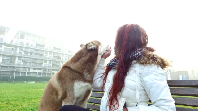 Young woman caresses her dog video