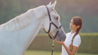 SLO MO Young woman caressing white horse in nature video