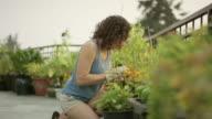 Young woman gardening in her garden video