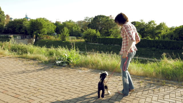 Young woman going along path with little funny dog video
