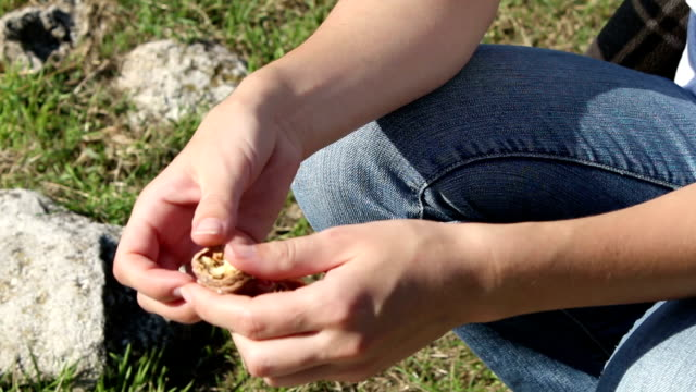 Young woman hands cracking walnut nuts in the backyard video
