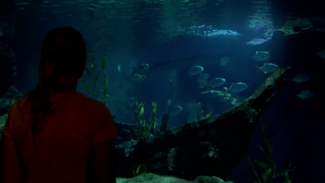 Young woman in Bangkok, Thailand at the oceanarium of Siam Ocean World watching on fish video