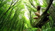 Young woman in beech forest video